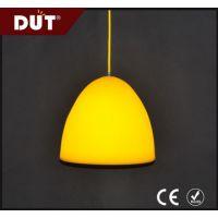 现代创意 特色室内装饰照明灯具 硅胶导光板吊灯