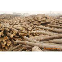 木材原木报关,木材原木报检,木材进口代理报关