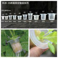 热销多规格水耕迷你定植篮 迷你水培植物 水培蔬菜水耕种植 链接