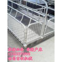 2016新款母猪双体产床2.1*3.6河北弘昌不二之选