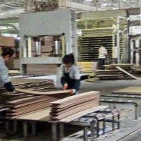 竹木及木木单板复合板设备