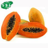 海南新鲜水果 三亚红心木瓜批发热带特产青木瓜果美容水果园现摘