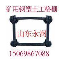 供应钢塑复合假顶网网孔5*5公分山东永润报价最低10.5元 15069867088