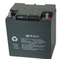 雷迪司铅酸电池现货供应