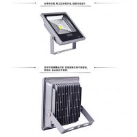 直销供应广东LED100W集成投光灯 中山创赢照明厂