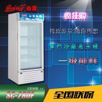 白雪SC-280F 单门冷藏展示柜 双门冷藏 展示柜 多门冷藏展示柜