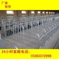 养猪设备母猪定位栏2.1*6十个猪位批发价格