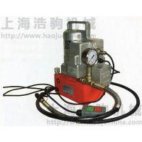 供应进口超高压电动液压泵P300S超强售后 上海浩驹