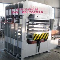 国森机械制造精度高设计合理竹地板热压机设备
