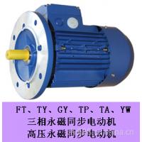 供应供应FT、TY、GY、TP、TA、YW三相永磁同步电机,超高效节能电机,一节能效电机