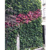 植物墙喷灌系统_仙桃植物墙_武汉植物墙公司