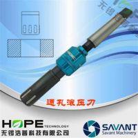 赛万特savant内孔镜面滚压刀挤压高光洁度加工抛光高精超精滚压加工SV-D269.9