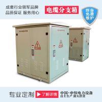 申恒电力 高压分支箱 DFW-12