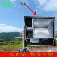 自贡市厂家直销金属球场道路照明灯杆 LED路灯灯杆 太阳能电线杆