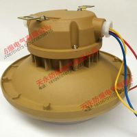 SBD1106-65W免维护节能防爆灯(吸顶式吸壁式)