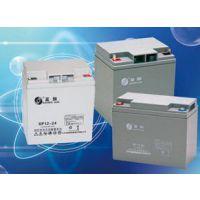 圣阳SP12-100蓄电池正品包邮