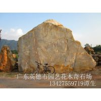 供应直销天然石 房地产景观石
