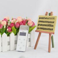 手机及电脑周边产品 中国好声音 掌上KTV 招各市代理 节日礼品