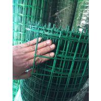 绿色养殖铁丝网@圈鸡养鸭围网@河北筛网丝网厂家