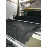 土工膜(图)_上海蓄排水板厂家直销_排水板
