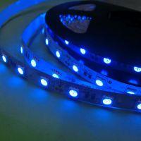 专业出售高品质5050蓝光60灯LED灯带 价格优惠