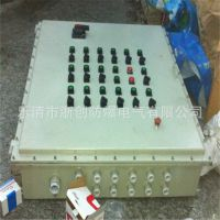 BJX防爆接线(端子)箱,  304不锈钢BXMD防爆照明动力箱