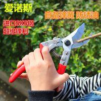 正品爱诺斯专业修枝剪日本进口SK5钢超级锋利自带配件果树剪