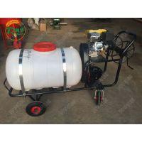 润华供应果园打药机 拉管式喷雾器 高压气雾杀毒喷药机