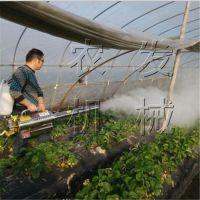 勐腊县农发NF-MW2脉冲动力 烟雾 水雾两用 烟雾机 品质保证