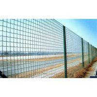 河北绿色铁丝网|新型绿色铁丝网批发价格|环保绿色铁丝网厂家直销