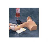 外周穿刺中心静脉插管线模型 SB20132U
