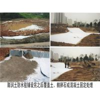 国标膨润土防水毯_山东覆膜型膨润土防水毯