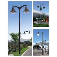 吉林省 长春市 3米4米双头别致庭院灯常州远达照明