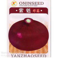 供应河北时丰农业科技开发有限公司时丰牌蔬菜种子(洋葱紫魁A6)