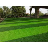 陕西西安人造草坪建设,康特人造草坪工程,人造草坪施工厂家