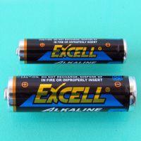 供应 EXCELL/南孚 AAA LR03 7号碱性电池 英文版