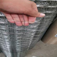 电焊网片厂家 安平电焊网 抹墙钢丝网