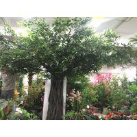 郑州枫林园艺厂家制作大树 仿真树 人造假树 室内外造景树图片