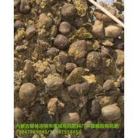 内蒙古颗粒发酵纯羊粪 有机肥料黄色包装干羊粪 蔬菜瓜果肥料