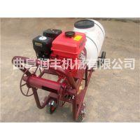 农药喷雾器型号 电动高压农药喷雾器厂家 润丰
