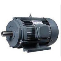 国产金港牌6极1.5kw电机,6极1.5千瓦Y100L-6电动机价格,新型YE2电机批发