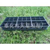 家庭园艺  阳台园艺  36孔花卉蔬菜育苗盘 种植盘