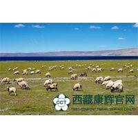 西藏经典旅游线路 纳木错一日游 高原圣湖