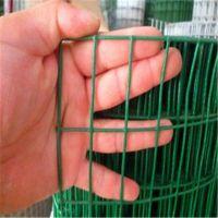浸塑电焊网@绿色浸塑电焊网@武汉浸塑电焊网厂家