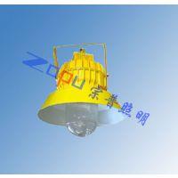 泰来TGF752-J70W高顶防爆应急泛光灯