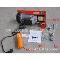 微型电动葫芦100-1000kg/220V 家用提升机/小型吊机升降机/起重机