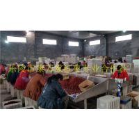 山东新疆大枣产地批发商