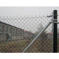 供应包塑勾花菱形防护网 热镀锌勾花网 菱形护栏网厂家直销
