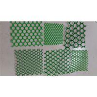 网孔2厘米养鸡塑料网生产厂家联系:15131879580