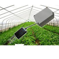 养殖场用温湿度传感器厂家,昆仑中大养殖温湿度监测很重要